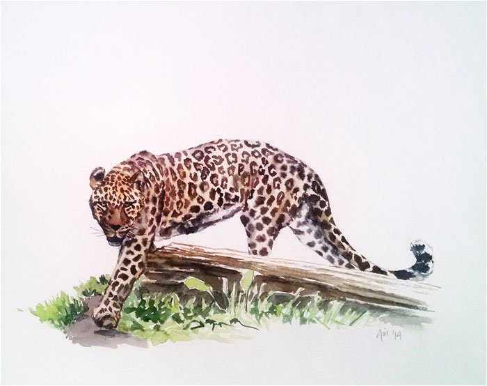 """JAGUAR"" - 14x11"" Original Watercolor Painting"