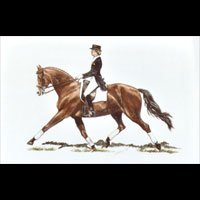 Thumbnail Dressage Queen