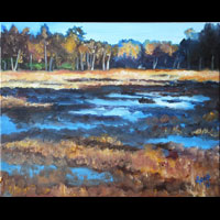 Thumbnail of Swedish Marsh